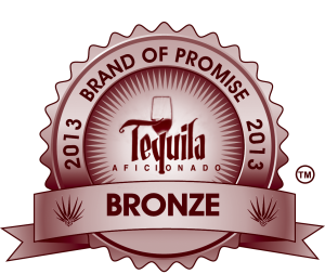 BRONZE 2013, awards