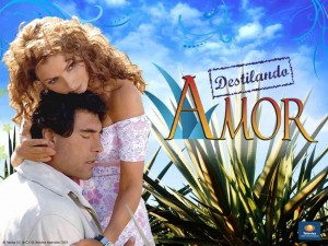 destilando amor, the education of a tequila drinker