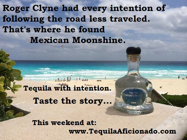 mexican moonshine, roger clyne, peacemakers, tequila