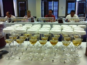 Covered tequila samples, taste tequila